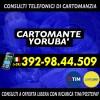 cartomante-yoruba-tim-572